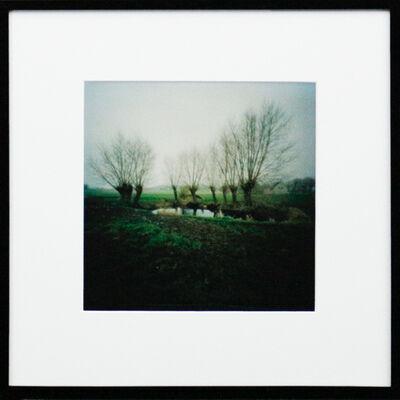 Dianne Bos, 'Farm Bomb Pool, Frontline, Flanders', 2015