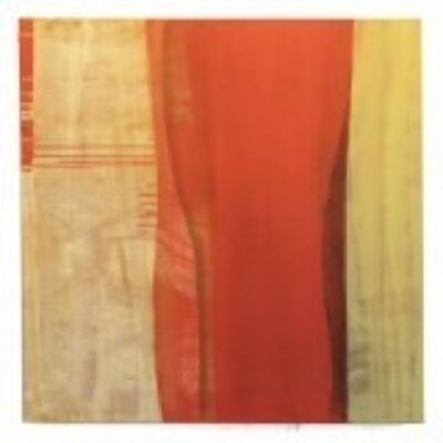 Marcy Rosenblat, 'Orange midriff', 2015