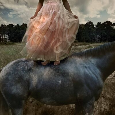 Tom Chambers, 'Prom Gown #2', 2005