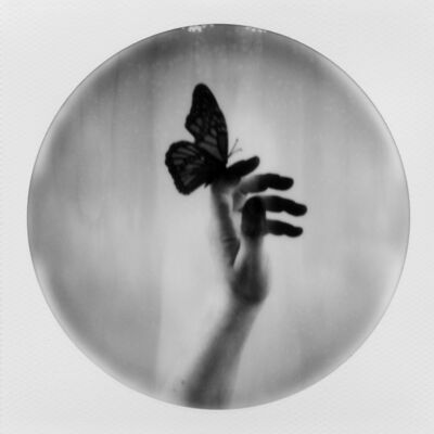 Julia Beyer, 'Butterfly Caught', 2017