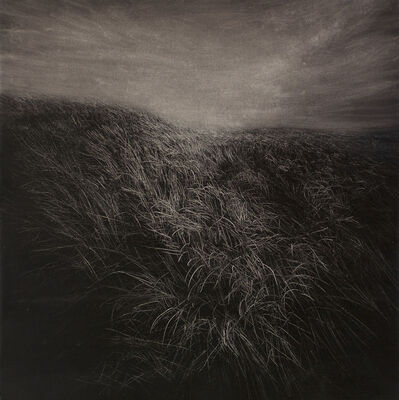 Heng Li, 'Twilight of the Gods', 2014