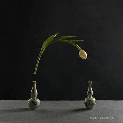 Marie Cecile Thijs, 'Tulips and Two Vases', 2015