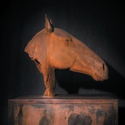 Mauro Corda, 'Equine Remnant'