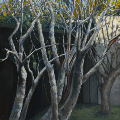 Jeff Bellerose, 'Branches', 2018