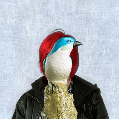 Helen Sear, 'Sightlines, Untitled 13', 2011