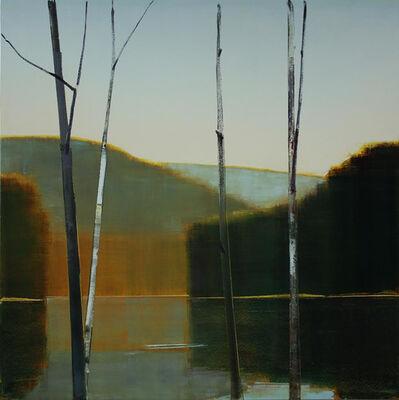 Stephen Pentak, '2014, X.VI', 2014