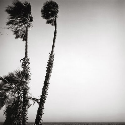 Alan Ostreicher, 'Untitled 564-11', 2002