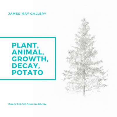 Plant, Animal, Growth, Decay, Potato: PAGDP: Work by Vince Palacios, Shannon Estlund, and Jaron Childs, installation view