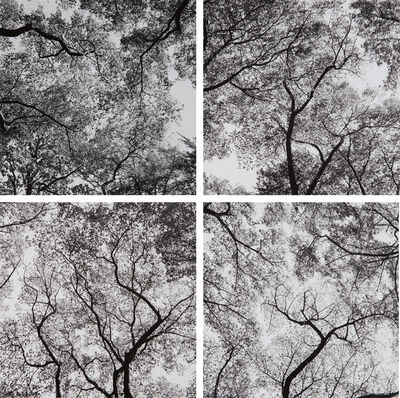 Harry Callahan, 'Ansley Park, Atlanta', 1991-1992