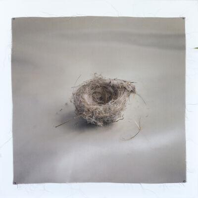Kate Breakey, 'Nest 23', 2010-2019