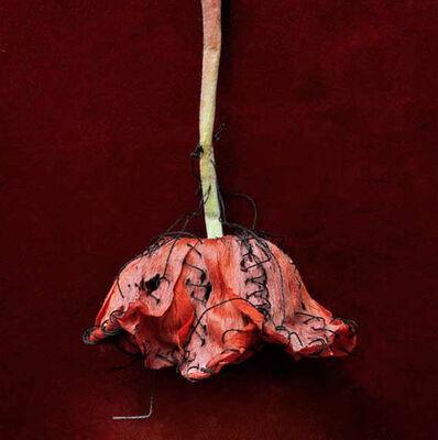 Christine Mathieu, 'La robe de mademoiselle Kikuji', 2011