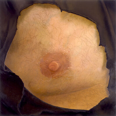 Catherine Murphy, 'Harry's Nipple', 2003