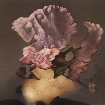 Ornella Fieres, 'Postcards to M / GAN14', 2021