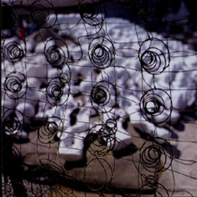 Miguel Rio Branco, 'Grade', 1996