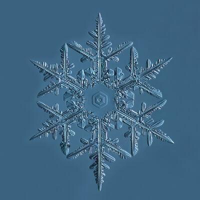 Douglas Levere, 'Snowflake 2015.02.02.001', 2015