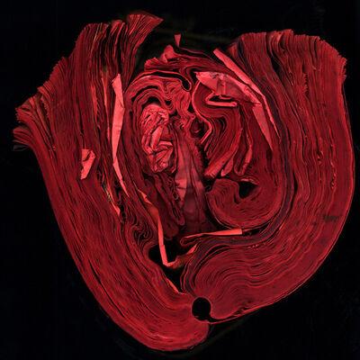 Cara Barer, 'Heart', 2011
