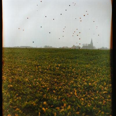 Dianne Bos, 'Flanders Fields Belgium', 2014