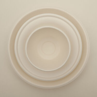 Rafael Rangel, 'Paper Cup Bowl and Plate', 2015-2018