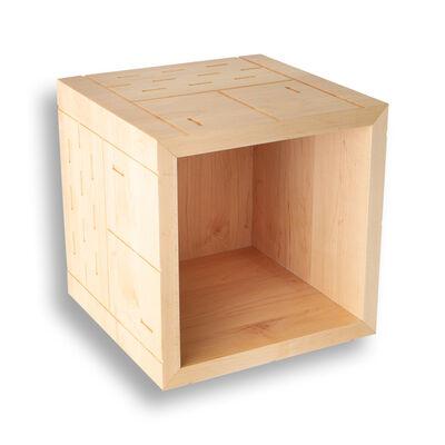 Noah Spencer, 'Maple Frogger Cube', 2021