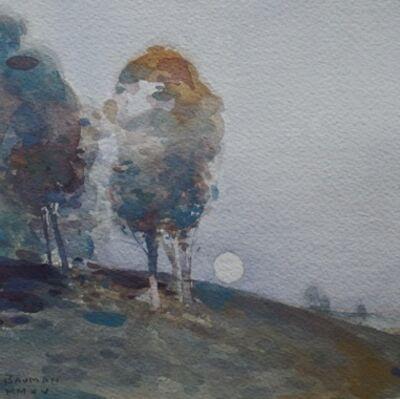 Stephen Bauman, 'Trees on a Hillside', 2015