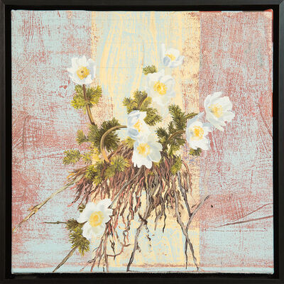 Mary Iverson, 'Western Pasqueflower', 2018