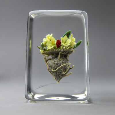 Paul Stankard, 'Glass Paperweight Fine Art Blossoming White Lillys —signed 90'', 1990
