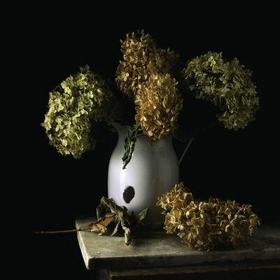 Paul Cary Goldberg, 'Still Life with Tin Pitcher and Hydrangea'
