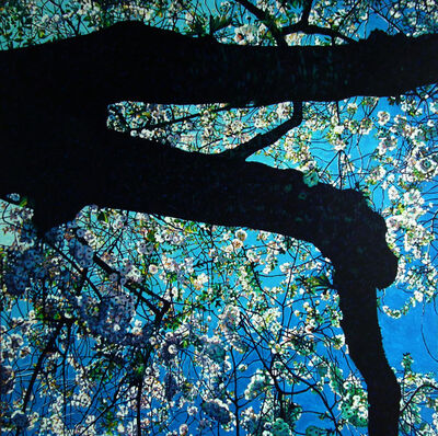 Christopher O'Connor, 'In Bloom No. 2'