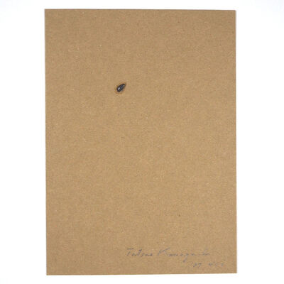 Tatsuo Kawaguchi, 'Relation – One Seed of Lead / Pomegranate', 1987