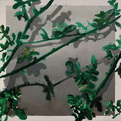 Tomas Harker, 'Wall Plant', 2019