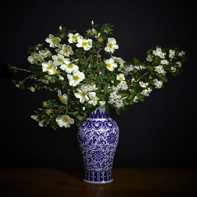 T.M. Glass, 'White Hawthorne & White Shrub Rose in a Blue and White Chinese Vase', 2018