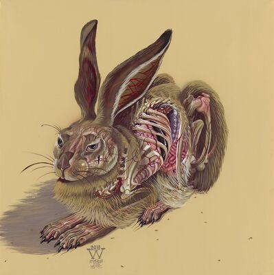 NYCHOS, 'Translucent Hare', 2014