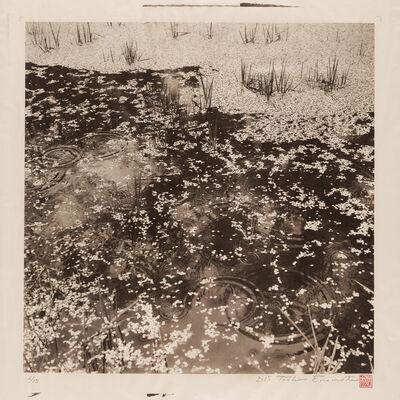 Toshio Enomoto, 'Rainy Moat of Takato Castle, Ina 1, Nagano', 2015