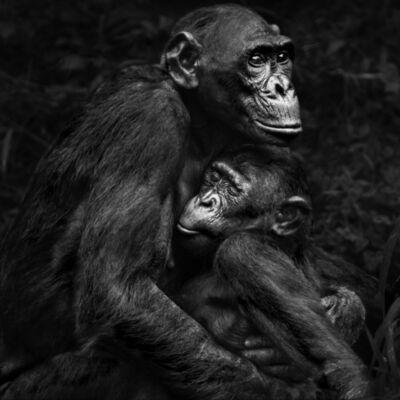 Isabel Muñoz, 'Serie Primates, 1/25', 2015