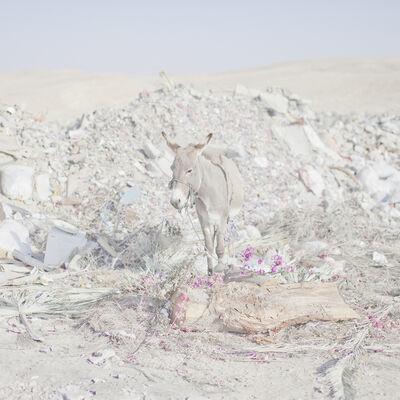Oded Balilty, 'Serie Hide and Seek, Negev Desert', 2009