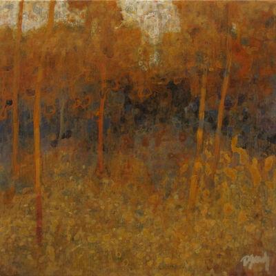 Diana Rae Zasadny, 'Cypress Hills Provincial Park Woodland'