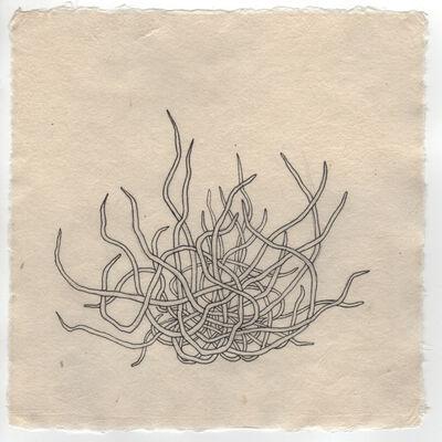 Tanja Softic, 'Motsure I (tangle)', 2017