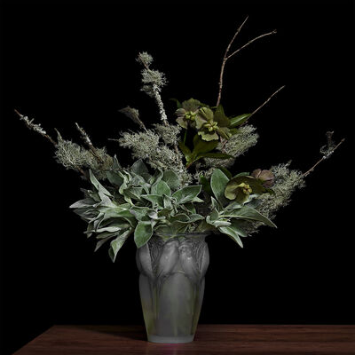 T.M. Glass, 'Lamb's Ear and Lichens on Pine Branches in a Lalique Glass Vase', 2018