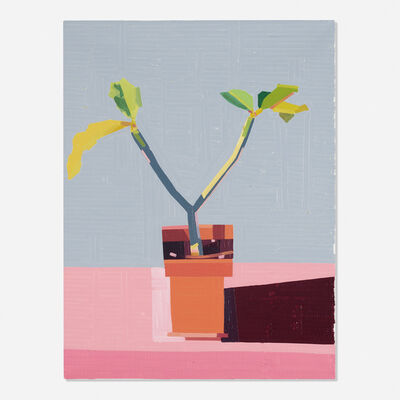 Guy Yanai, 'Plant on Roof', 2019