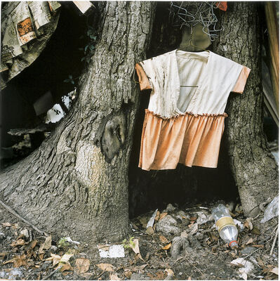 Elijah Gowin, 'Child's Dress in Tree Trunk', 1997