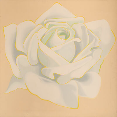 Lowell Nesbitt, 'White Rose', 1964