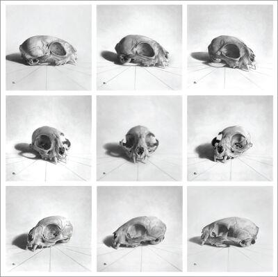 Marshall Harris, '9 Skulls'