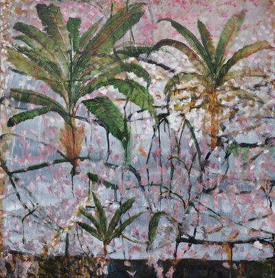 Richard Dunlop, 'Rainforest Tropical Queensland', 2019