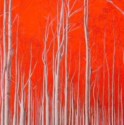 "Karine Boulanger, '""Hoy amaneció rojo el universo"" (The universe dawned red today)', 2015"