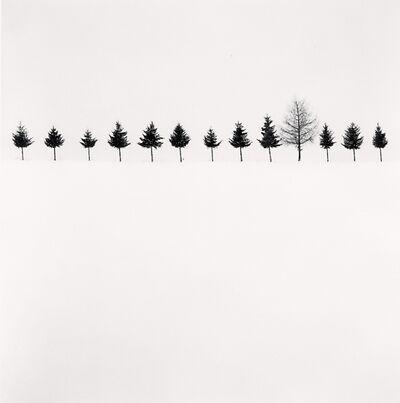 Michael Kenna, 'Line of Trees, Biei, Hokkaido, Japan', 2012