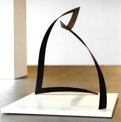 Pedro Fermin, 'Vertice 04042104', 2014