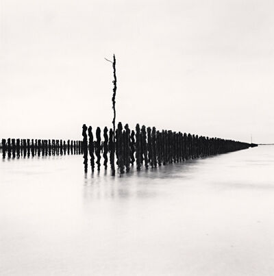 Michael Kenna, 'Mussel Posts, Chausey Islands, France', 2007