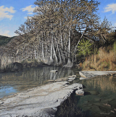 Garrett Middaugh, 'A Grove of Trees along the Frio River in April'