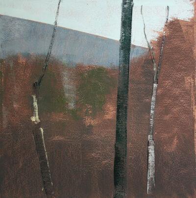 Stephen Pentak, '2015, 1.5', 2014