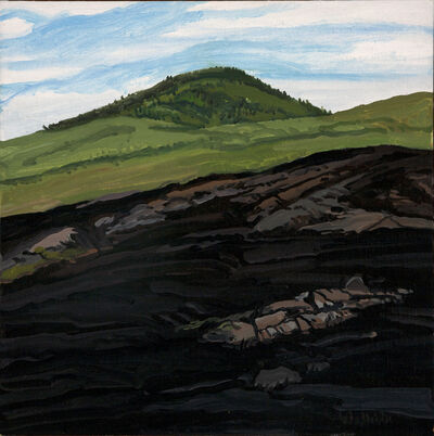 Neil G. Welliver, 'Study for Blueberry Burn Morey's Hill', 1993